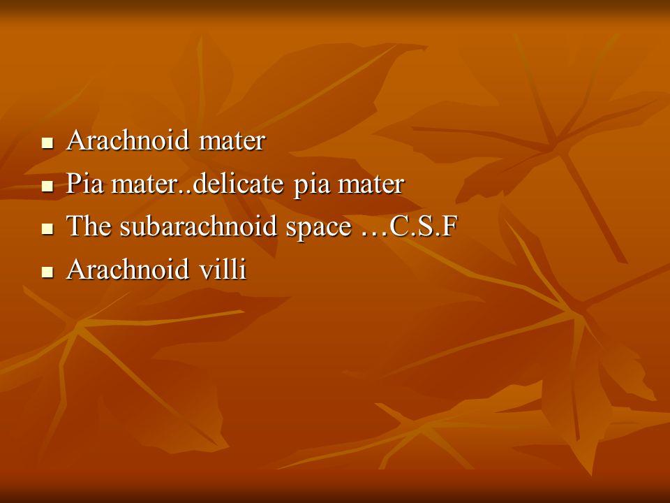 Arachnoid mater Pia mater..delicate pia mater The subarachnoid space …C.S.F Arachnoid villi