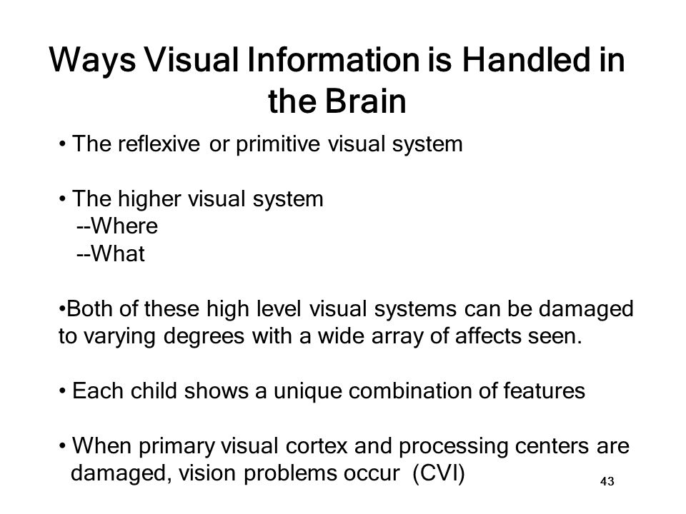 Damage to the Brain and Vision Impairment