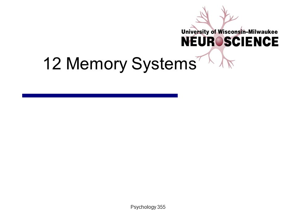 12 Memory Systems Psychology 355
