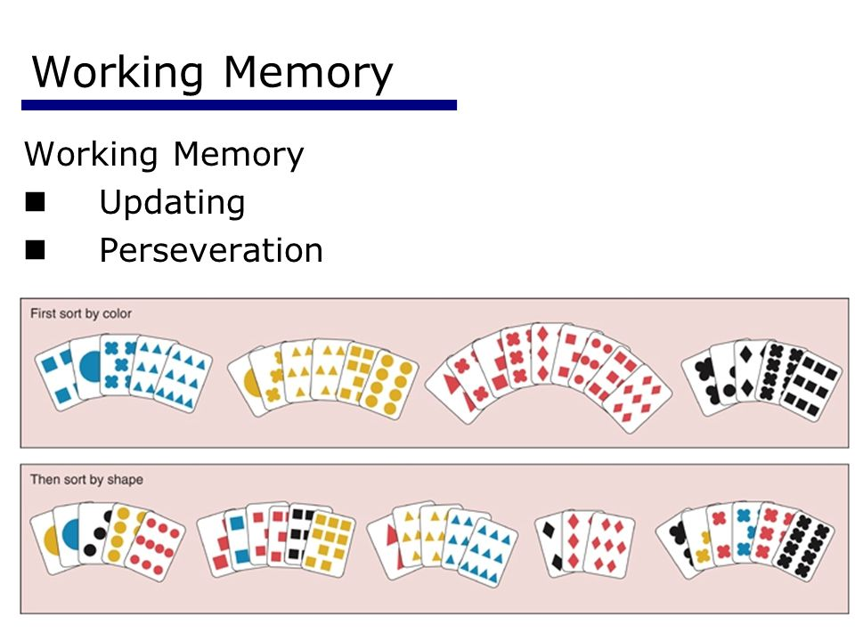 Working Memory Working Memory Updating Perseveration Psychology 355