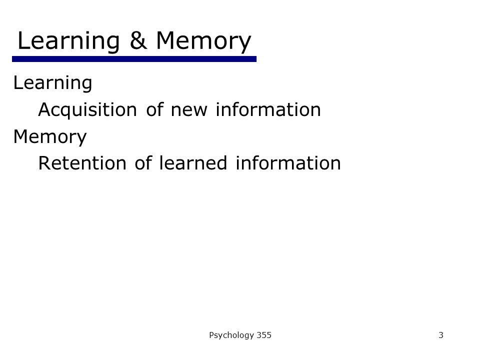Learning & Memory Learning Acquisition of new information Memory