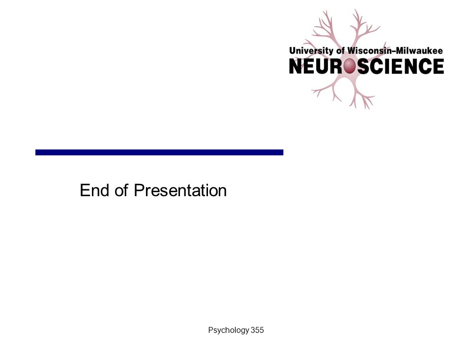 End of Presentation Psychology 355