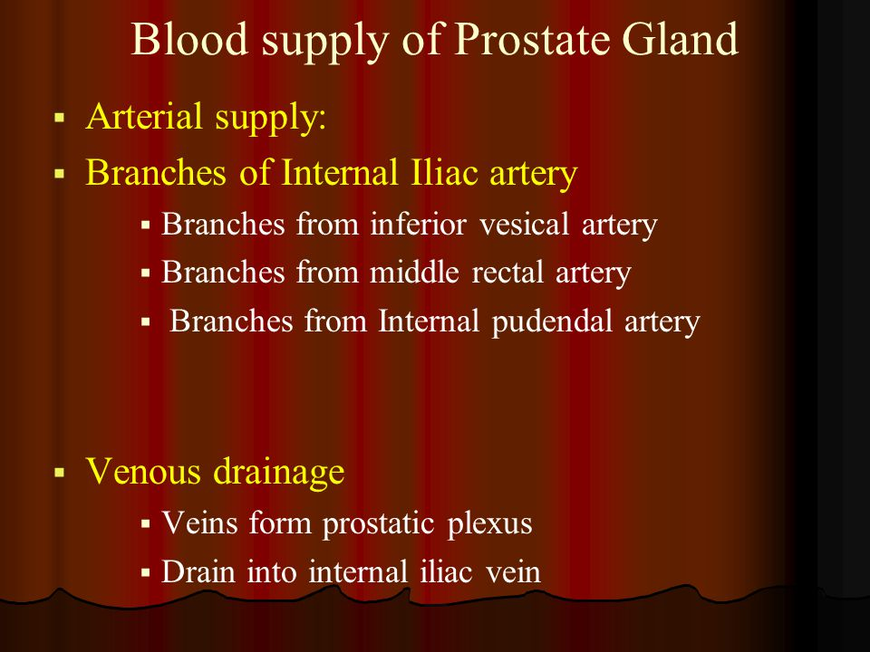 Blood supply of Prostate Gland