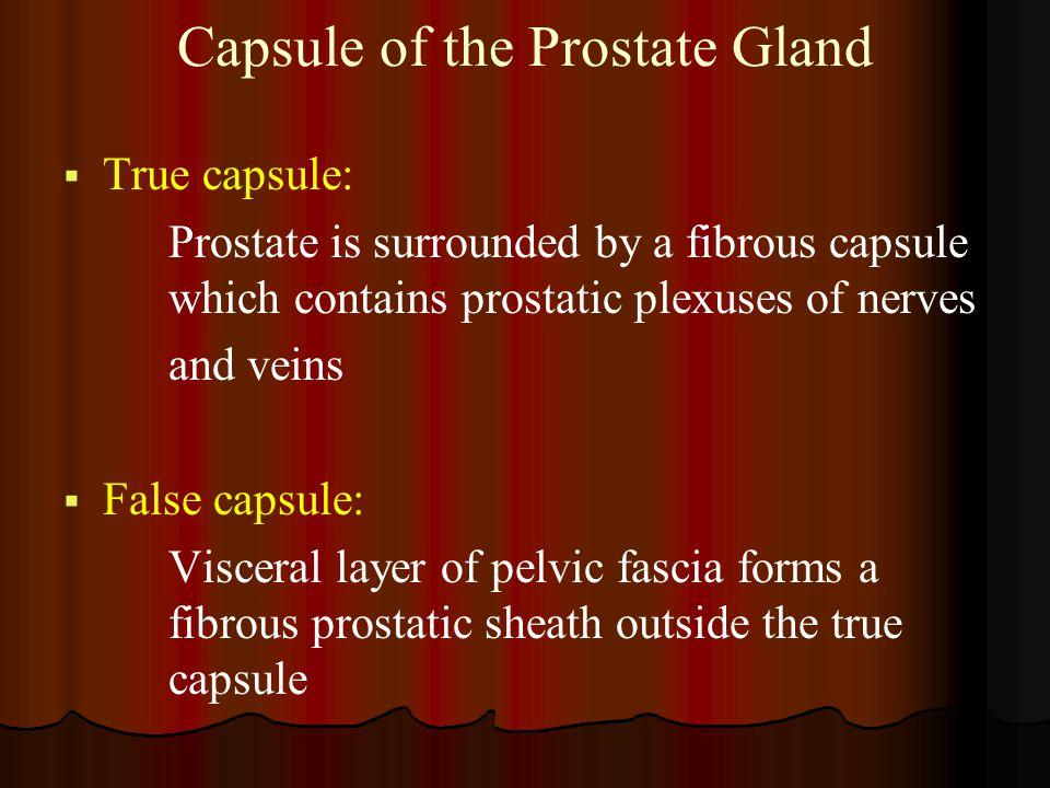Capsule of the Prostate Gland