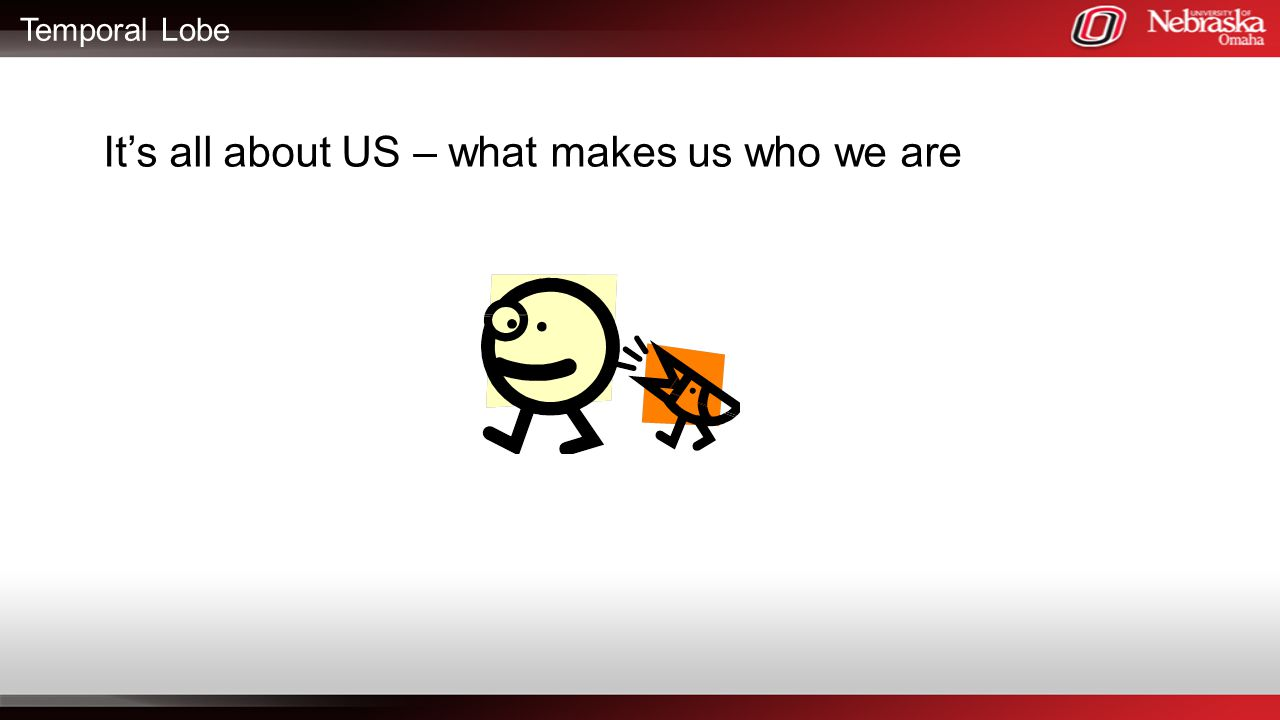 It's all about US – what makes us who we are