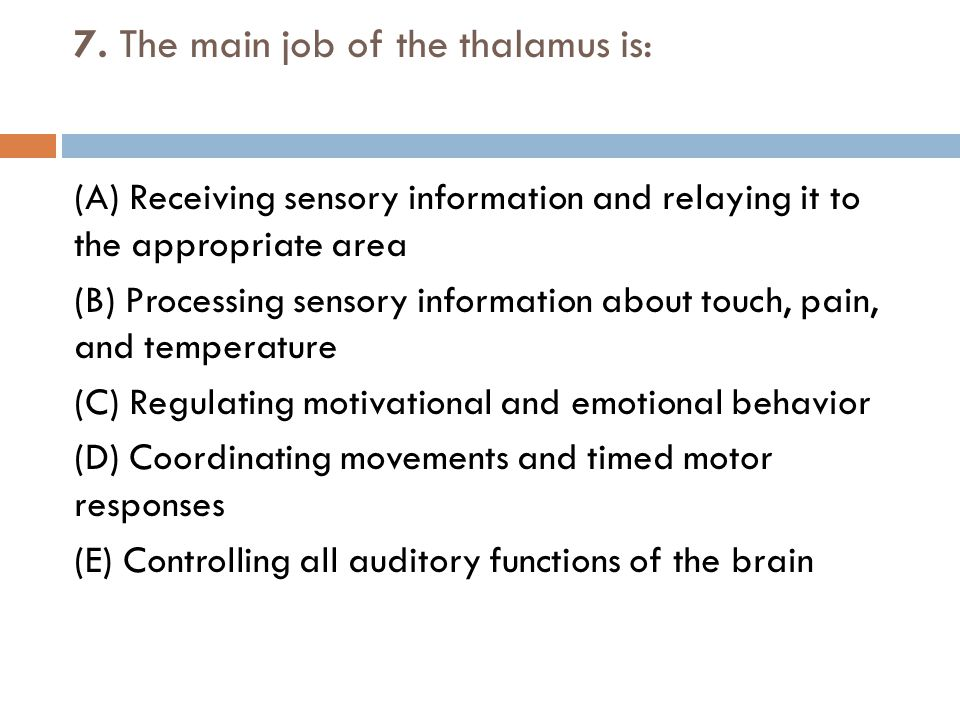 7. The main job of the thalamus is: