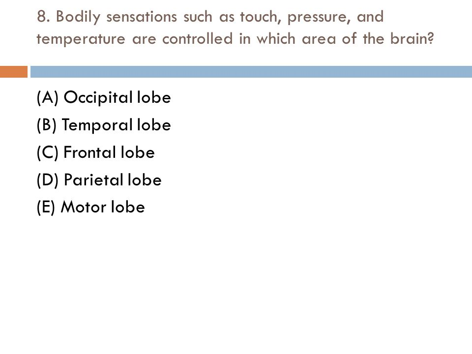8. Bodily sensations such as touch, pressure, and temperature are controlled in which area of the brain