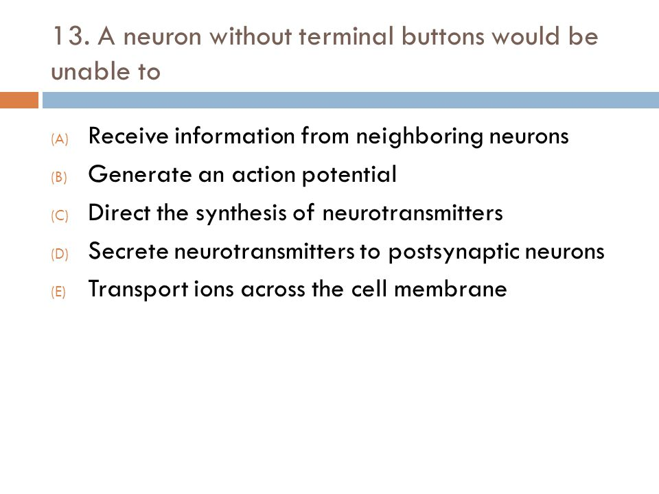 13. A neuron without terminal buttons would be unable to