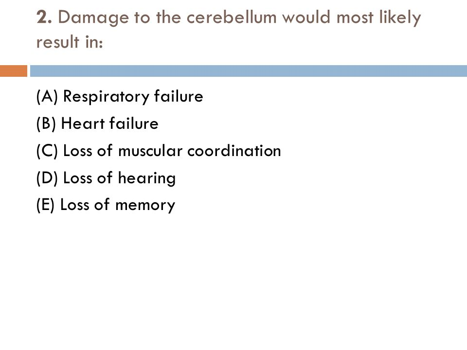 2. Damage to the cerebellum would most likely result in: