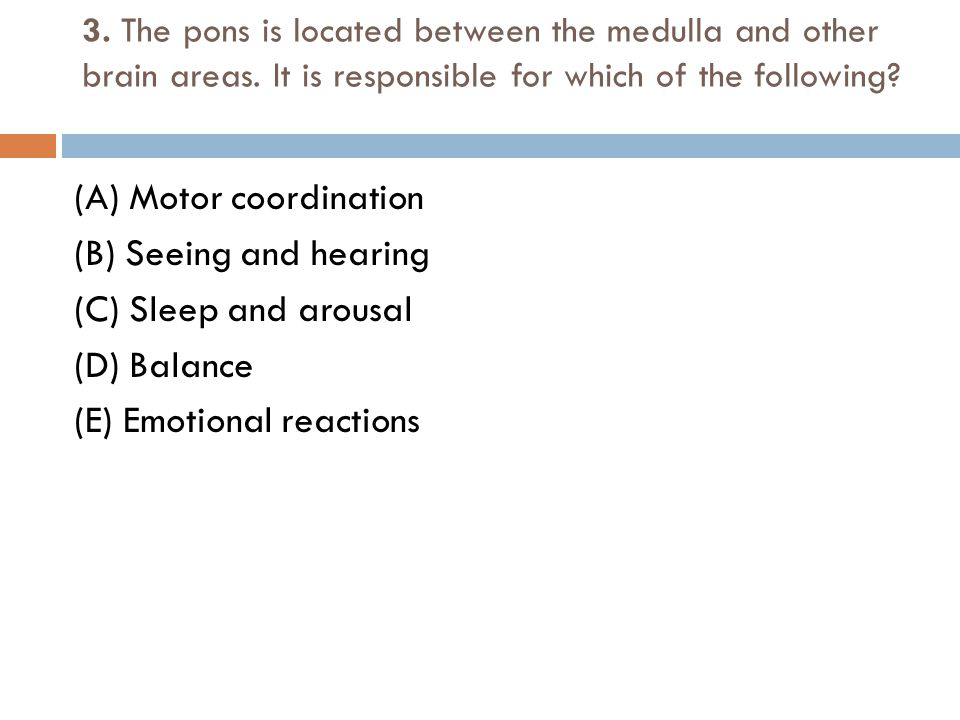 (A) Motor coordination (B) Seeing and hearing (C) Sleep and arousal