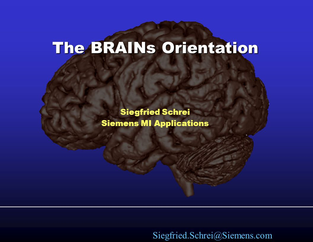 The BRAINs Orientation
