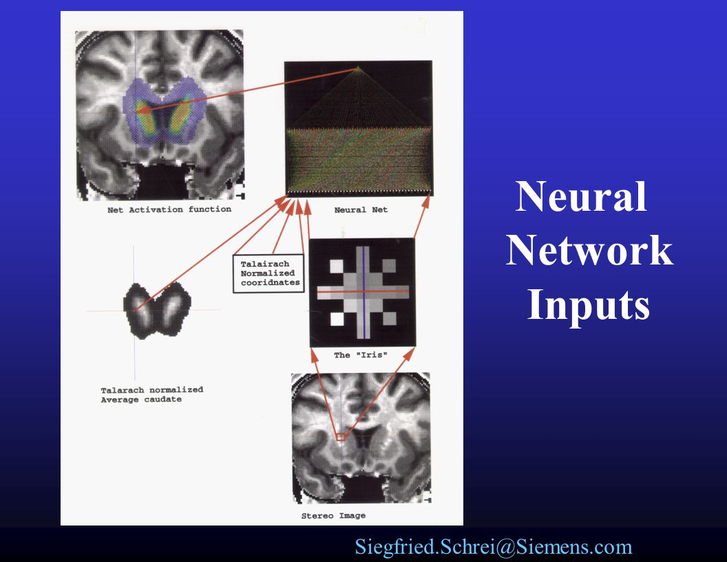 Neural Network Inputs