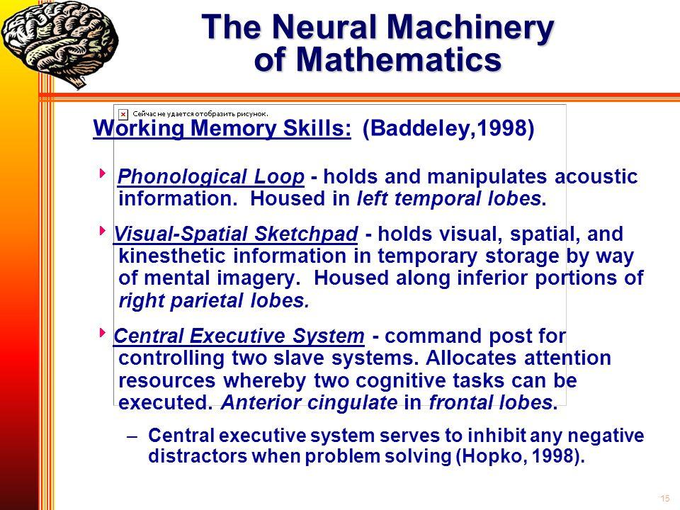 The Neural Machinery of Mathematics