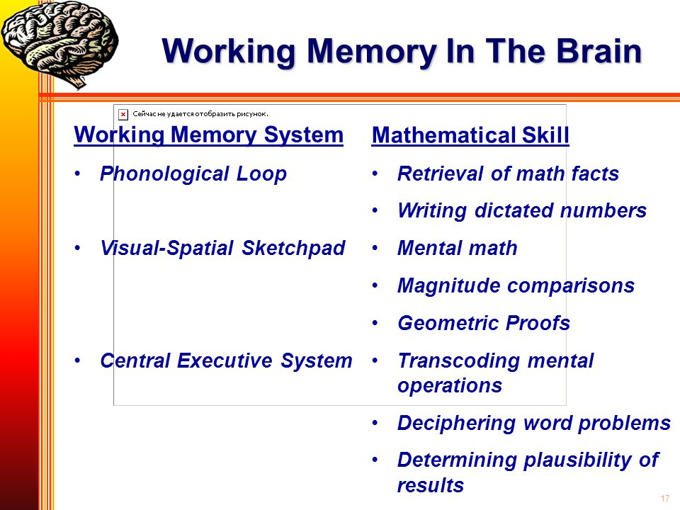 Working Memory In The Brain