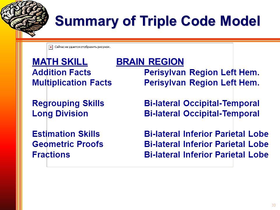 Summary of Triple Code Model