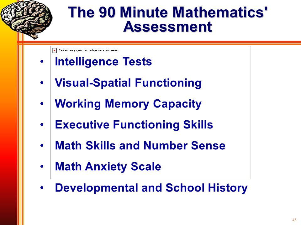 The 90 Minute Mathematics Assessment