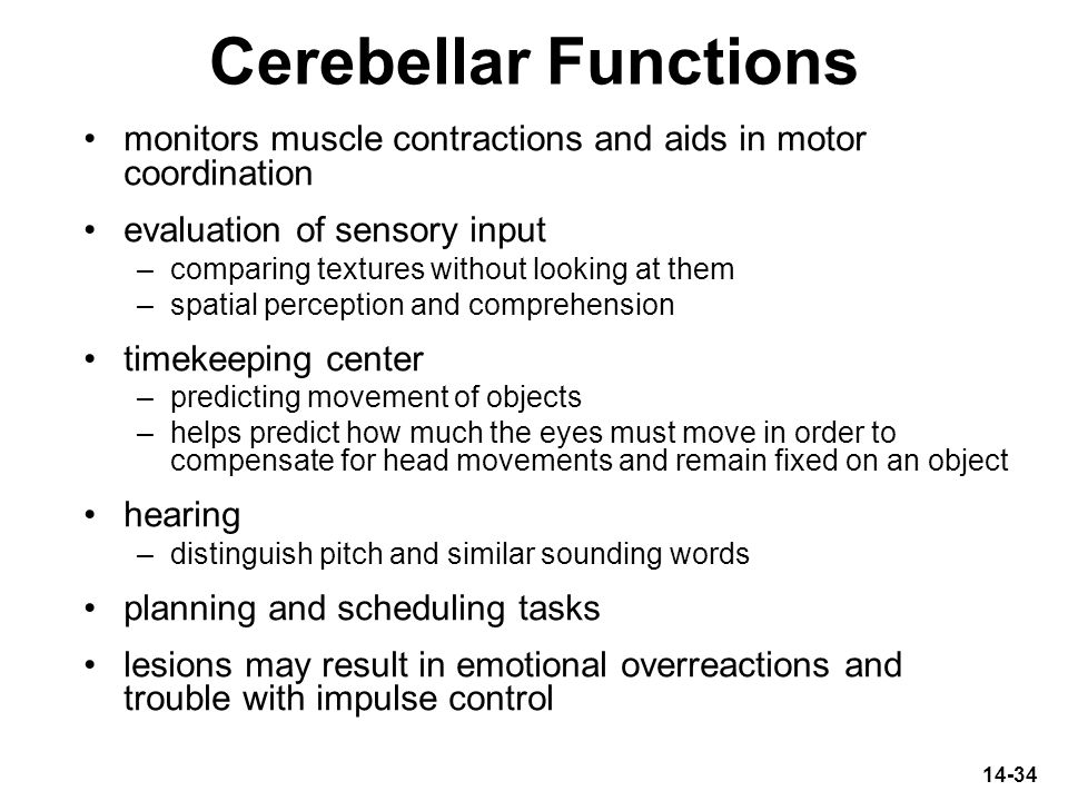 Cerebellar Functions monitors muscle contractions and aids in motor coordination. evaluation of sensory input.