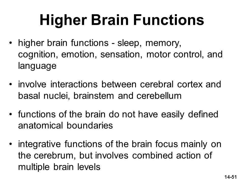 Higher Brain Functions