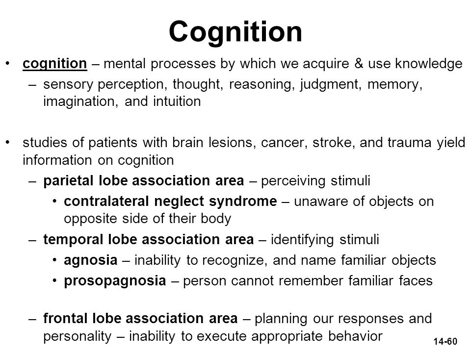 Cognition cognition – mental processes by which we acquire & use knowledge.
