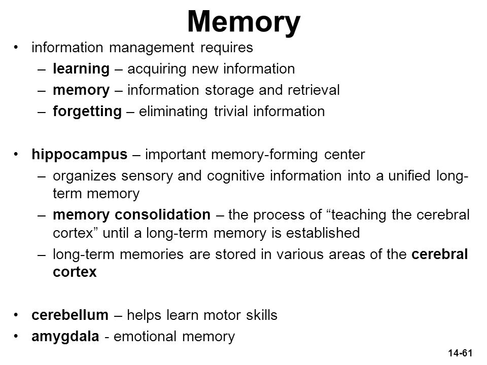 Memory information management requires