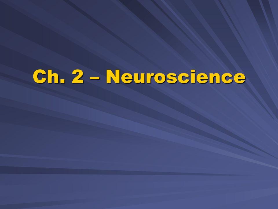Ch. 2 – Neuroscience