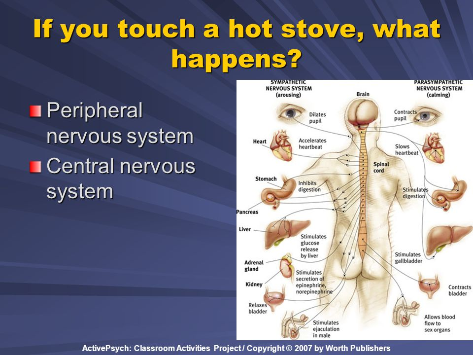 If you touch a hot stove, what happens