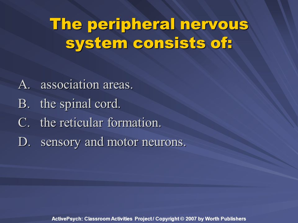 The peripheral nervous system consists of:
