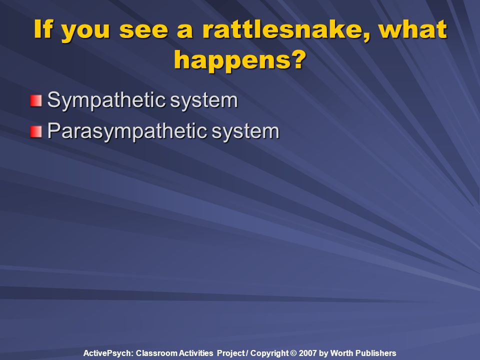 If you see a rattlesnake, what happens