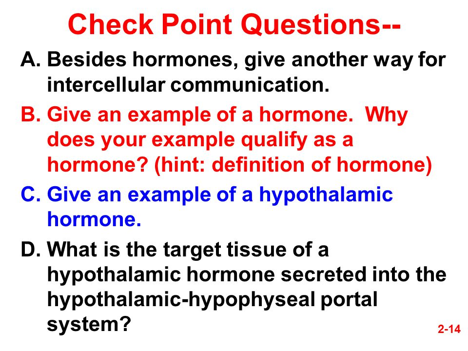 Check Point Questions--