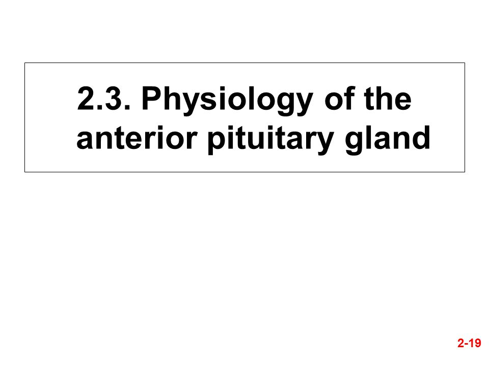 2.3. Physiology of the anterior pituitary gland