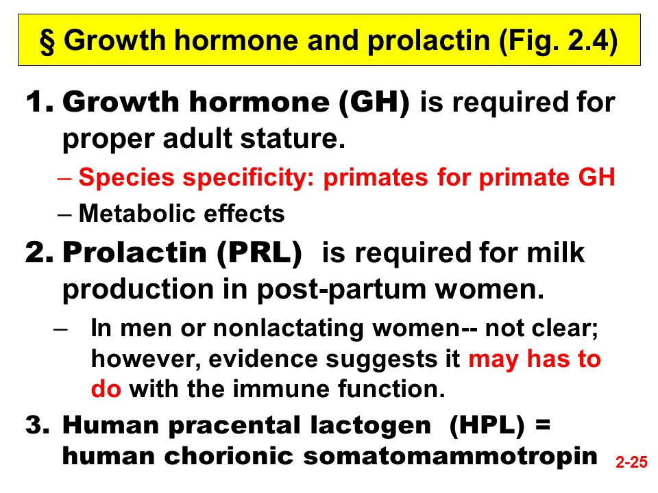 § Growth hormone and prolactin (Fig. 2.4)