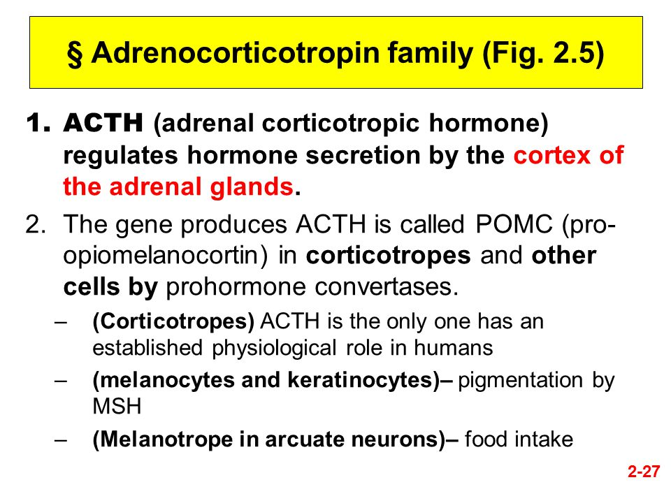 § Adrenocorticotropin family (Fig. 2.5)