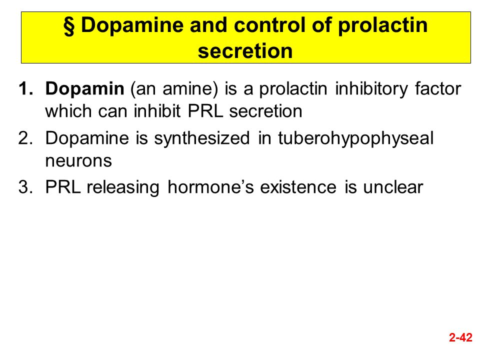 § Dopamine and control of prolactin secretion