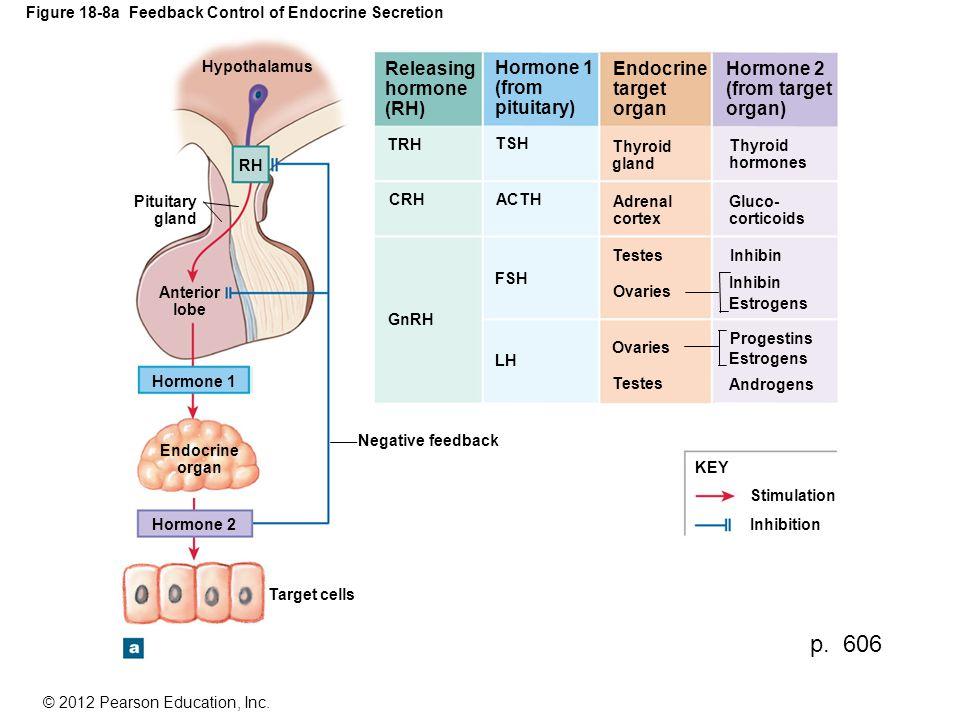 Figure 18-8a Feedback Control of Endocrine Secretion