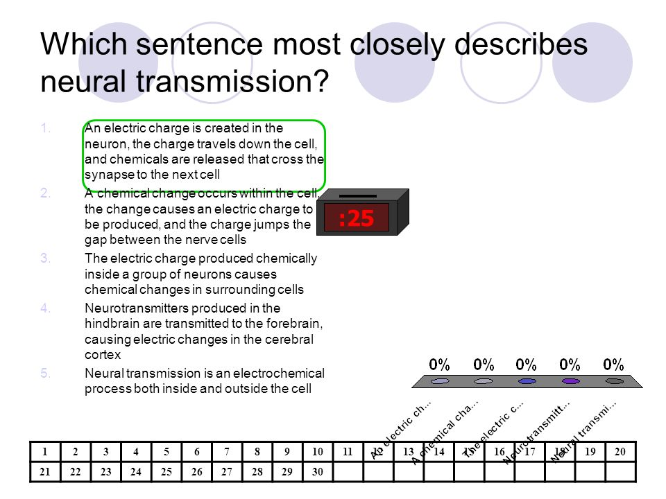 Which sentence most closely describes neural transmission