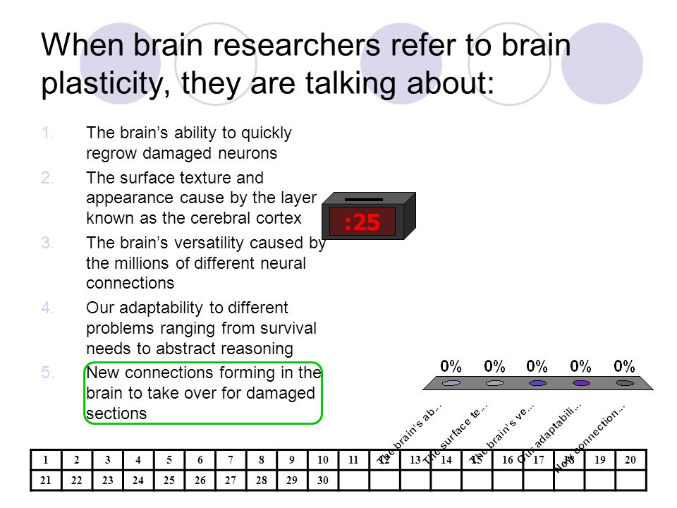 When brain researchers refer to brain plasticity, they are talking about: