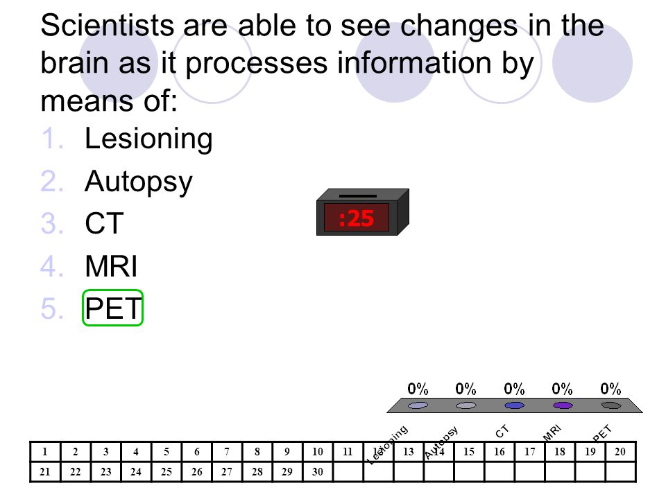 Scientists are able to see changes in the brain as it processes information by means of: