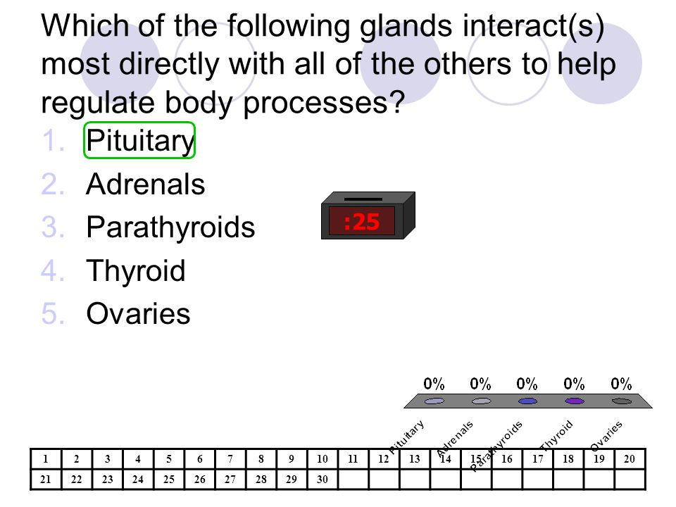Which of the following glands interact(s) most directly with all of the others to help regulate body processes