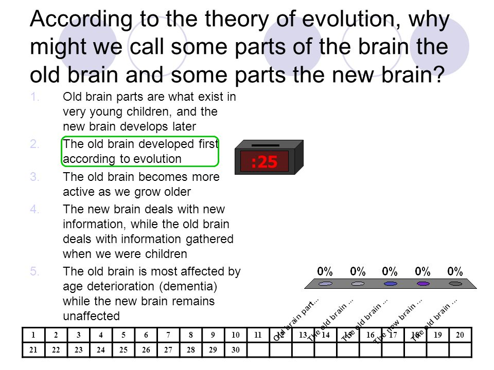 According to the theory of evolution, why might we call some parts of the brain the old brain and some parts the new brain