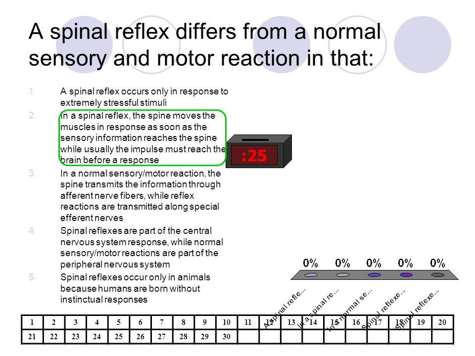 A spinal reflex differs from a normal sensory and motor reaction in that: