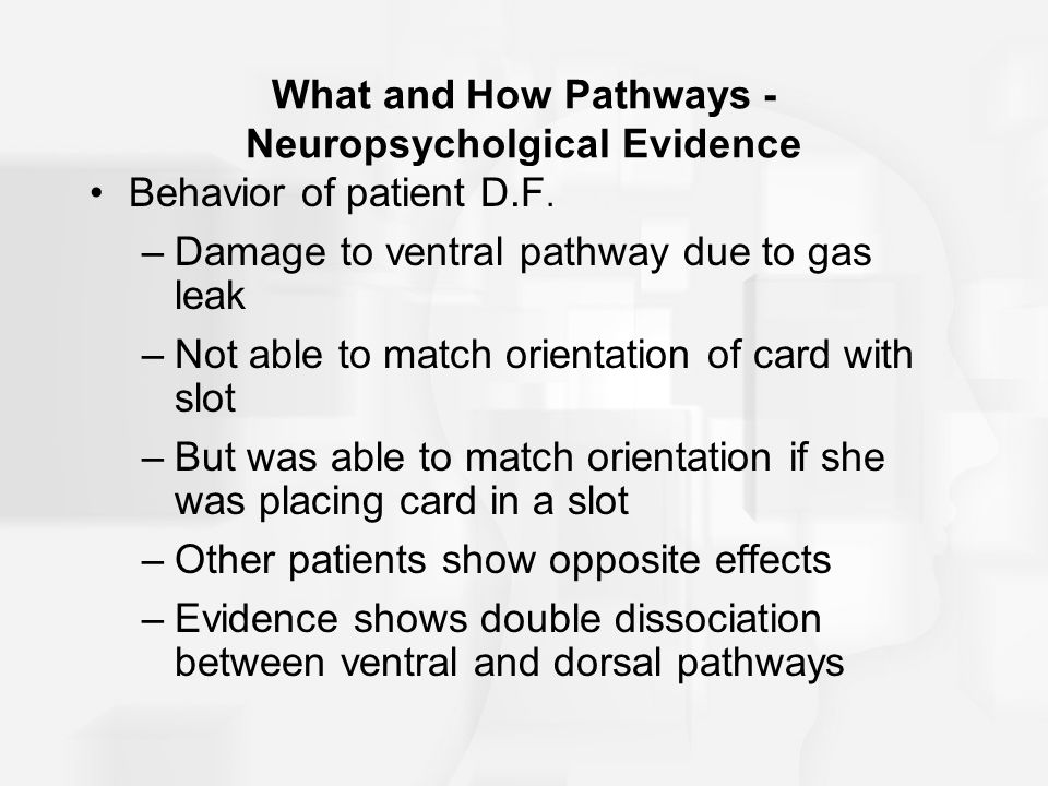 What and How Pathways - Neuropsycholgical Evidence