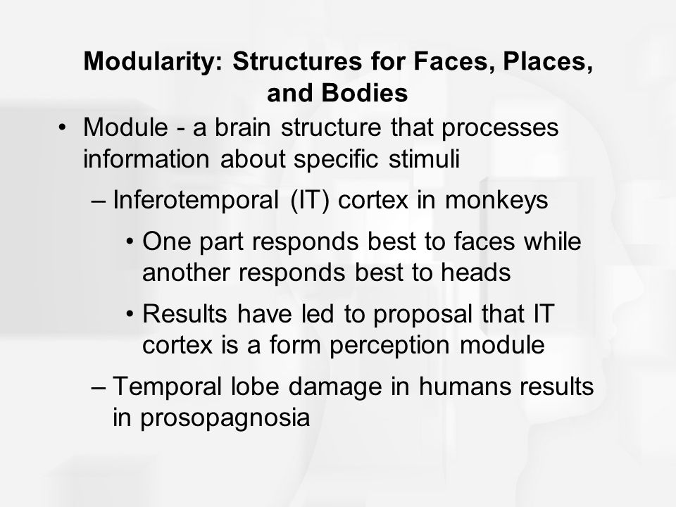 Modularity: Structures for Faces, Places, and Bodies
