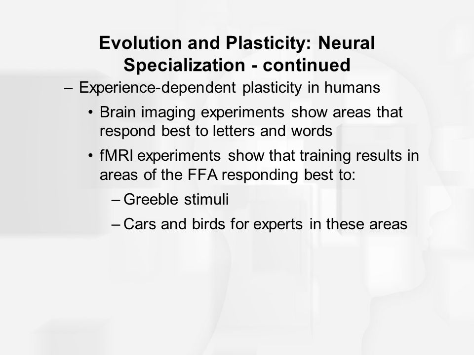 Evolution and Plasticity: Neural Specialization - continued