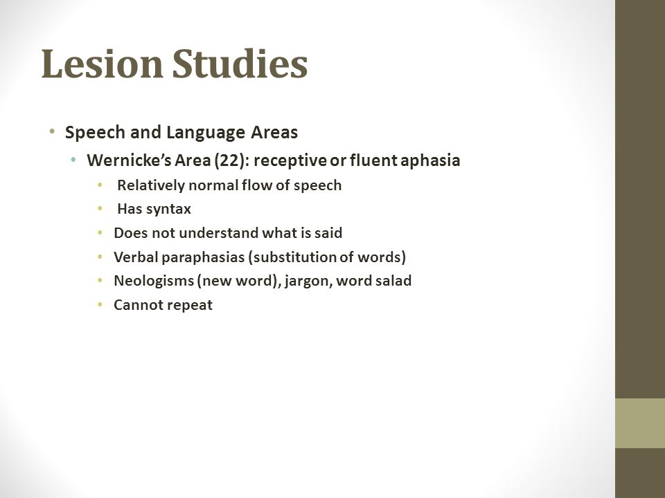 Lesion Studies Speech and Language Areas