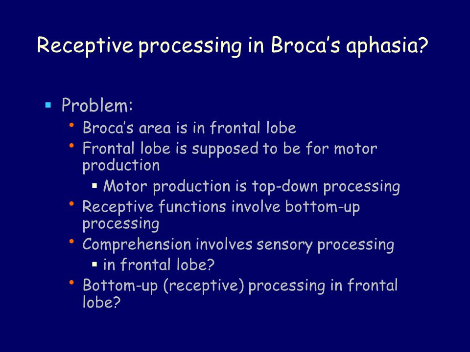 Receptive processing in Broca's aphasia