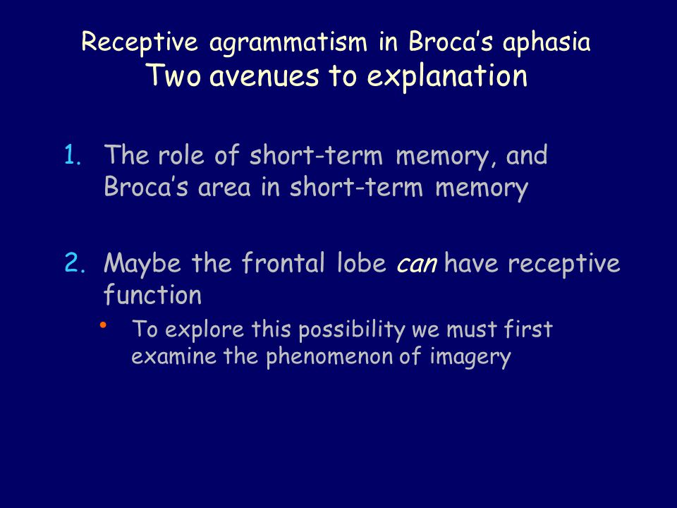 Receptive agrammatism in Broca's aphasia Two avenues to explanation