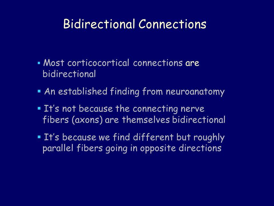 Bidirectional Connections