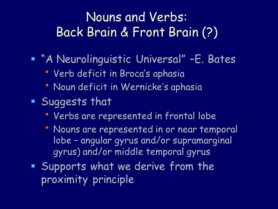 Nouns and Verbs: Back Brain & Front Brain ( )