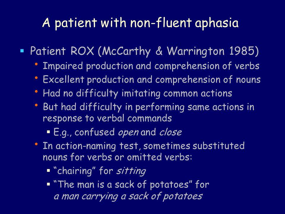 A patient with non-fluent aphasia