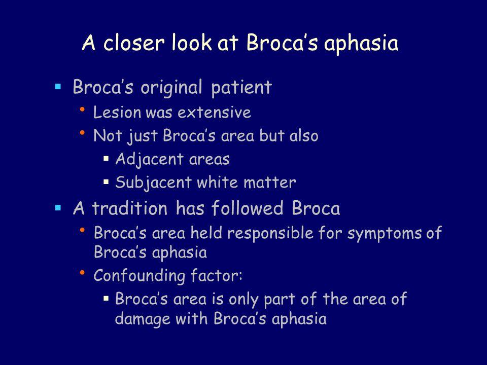 A closer look at Broca's aphasia